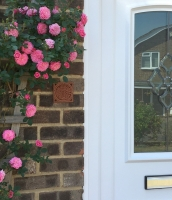 Highgrove's Garden of Delights graces the entrance of home in Uckfield (UK)