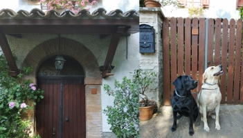 Dear House & Cave Canem on a lovely House in Castel Giorgio (Italy)