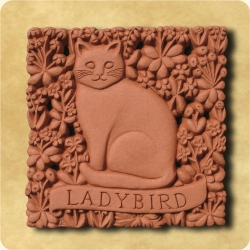 Personalised example of A personalised gift for a magnificent cat