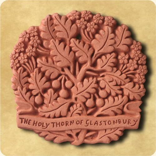 Glastonbury Thorn or Holy Thorn